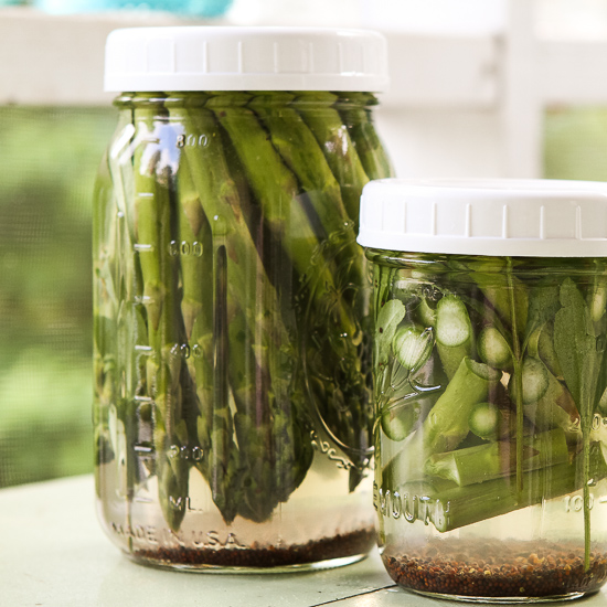 Winey Briney Quick Pickled Asparagus