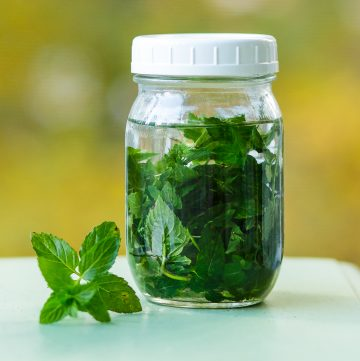 Jar filled with mint leaves and vodka.