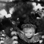 20131225-black-and-white-Christmas-2-L