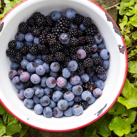 Blackberries and Blueberries | Wordless Wednesday