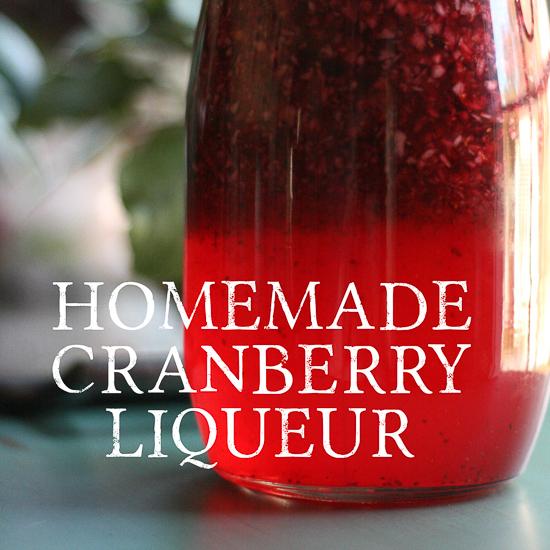 5 Favorite Cranberry Recipes!