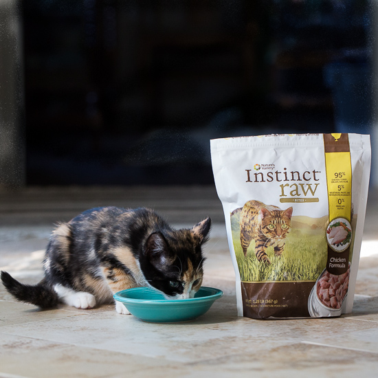 Instinct Raw Cat Food