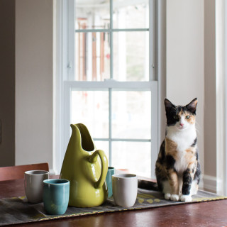 Luxie and her Russel Wright Pottery