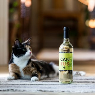 Cantus White Wine Blend