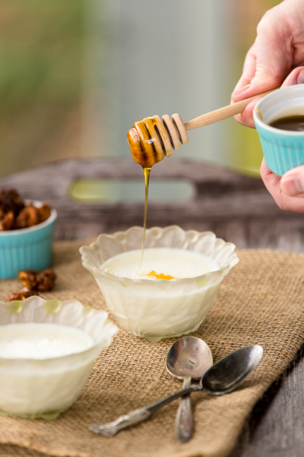 Vanilla Yogurt Panna Cotta with Honey and Candied Walnuts