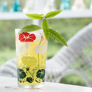 Cold Brew Green Tea with Lemon Verbena