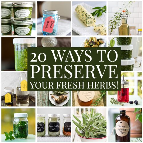 20 Delicious Ways to Preserve Your Fresh Herbs
