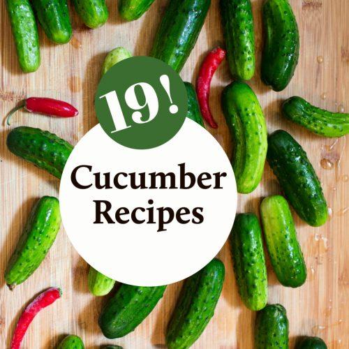19 Delicious Cucumber Recipes!
